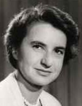 rosalind franklin research paper Rosalind franklin university of medicine and science application essays (college admissions essays) writing service, buy essays, term papers, research papers buy.